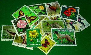 Briefmarken-Auswahl auf grünen Farbkarton